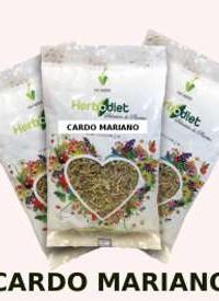 cardo-mariano-60-grs